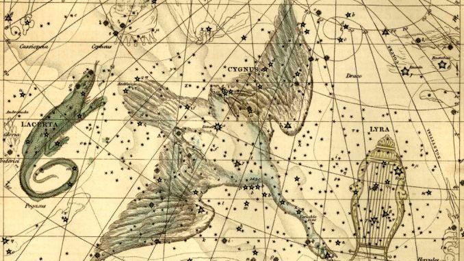 sternbild cygnus